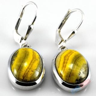 Stříbrné náušnice (Ag 925 1000) s bumblebee jaspisem QA 9a973fcc2e